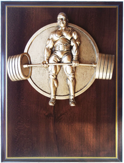 Powerlifting trophys,weightlifting trophys