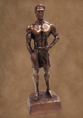 Male Physique awards