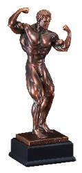 male bodybuilding awards, sculpture statues